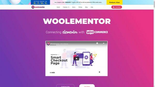 Download Woolementor Pro